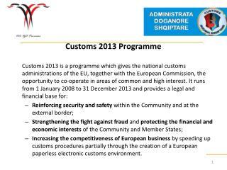 Customs 2013 Programme