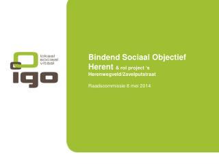 Bindend Sociaal Objectief Herent  & rol project 's Herenwegveld/Zavelputstraat