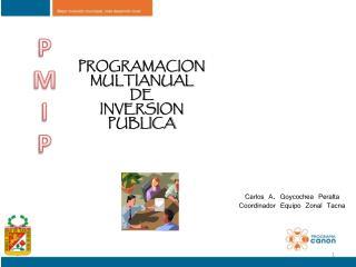 PROGRAMACION  MULTIANUAL  DE  INVERSION  PUBLICA
