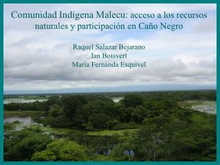 Comunidad Ind�gena Malecu:  acceso a los recursos naturales y participaci�n en Ca�o Negro