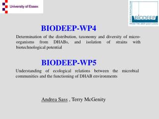 BIODEEP-WP4