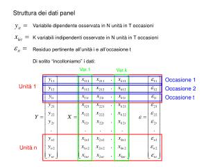 Struttura dei dati panel