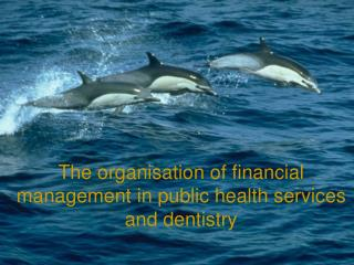 The organisation of financial management in public health services and dentistry