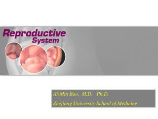 Ai-Min Bao,  M.D.   Ph.D. Zhejiang University School of Medicine