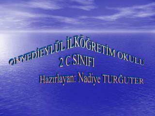 ONYEDİEYLÜL İLKÖĞRETİM OKULU 2 C SINIFI                Hazırlayan: Nadiye TURĞUTER