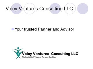 Volcy Ventures Consulting LLC