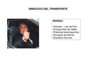 SINDICATO DEL TRANSPORTE