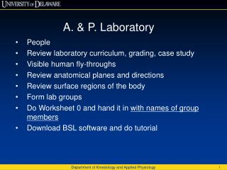 A. & P. Laboratory People Review  laboratory curriculum, grading, case study