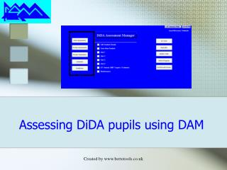 Assessing DiDA pupils using DAM