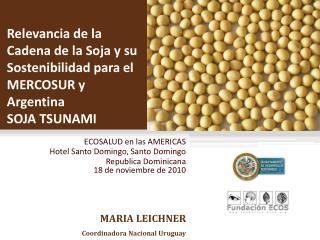 Relevancia de la Cadena de la Soja y su Sostenibilidad para el MERCOSUR y Argentina  SOJA TSUNAMI