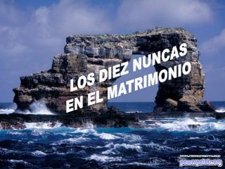 LOS DIEZ NUNCAS EN EL MATRIMONIO