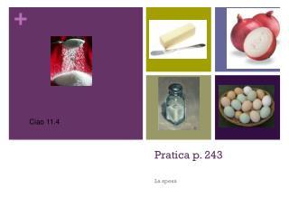 Pratica p. 243