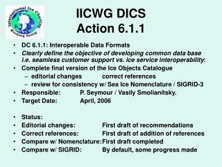 IICWG DICS Action 6.1.1