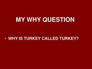 MY WHY QUESTION WHY IS TURKEY CALLED TURKEY?