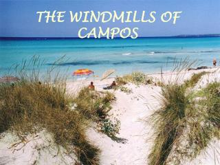 THE WINDMILLS OF CAMPOS