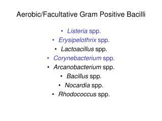 Aerobic/Facultative Gram Positive Bacilli