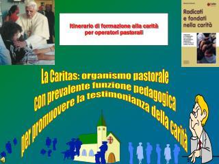La Caritas: organismo pastorale con prevalente funzione pedagogica