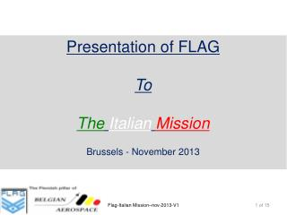 Presentation of  FLAG To  The Italian Mission Brussels - November 2013