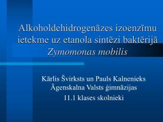 Alkoholdehidrogenāzes izoenzīmu ietekme uz etanola sintēzi baktērijā  Zymomonas mobilis