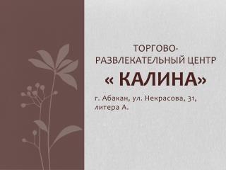 Торгово-развлекательный центр « КАЛИНА»
