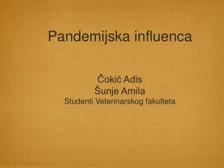 Pandemijska influenca Čokić Adis  Šunje Amila Studenti Veterinarskog fakulteta
