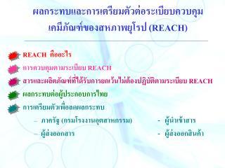 ผลกระทบและการเตรียมตัวต่อระเบียบควบคุม เคมีภัณฑ์ของสหภาพยุโรป  (REACH)