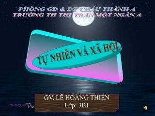 PHÒNG GD & ĐT CHÂU THÀNH A TRƯỜNG TH THỊ TRẤN MỘT NGÀN A