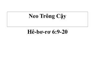 Neo Trông Cậy
