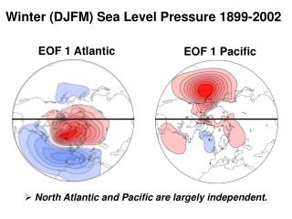 Winter (DJFM) Sea Level Pressure 1899-2002