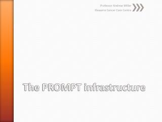 The PROMPT infrastructure