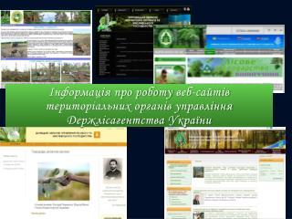Інформація про роботу  веб-сайтів  територіальних органів управління  Держлісагентства України