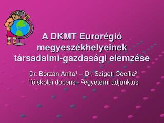 A DKMT Eurorégió megyeszékhelyeinek társadalmi-gazdasági elemzése