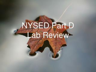 NYSED Part D  Lab Review