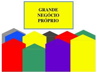 GRANDE NEGÓCIO PRÓPRIO
