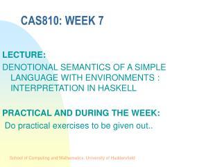 CAS810: WEEK 7