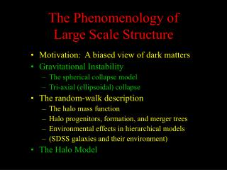 The Phenomenology of Large Scale Structure
