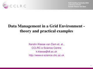 Data Management in a Grid Environment - theory and practical examples