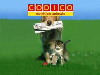 La société CODICO SA est localisée dans le Sud Ouest, terroir de tradition gastronomique…
