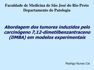 Rodrigo Nunes Cal