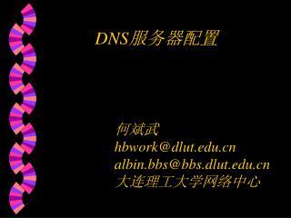 DNS 服务器配置