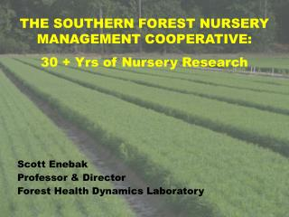 THE SOUTHERN FOREST NURSERY MANAGEMENT COOPERATIVE:  30 + Yrs of Nursery Research Scott Enebak