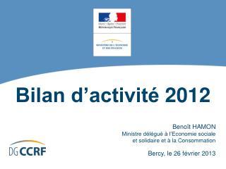 Bilan d'activité2012