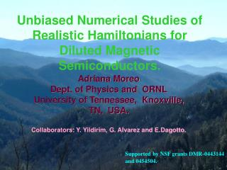 Unbiased Numerical Studies of Realistic Hamiltonians for Diluted Magnetic Semiconductors.
