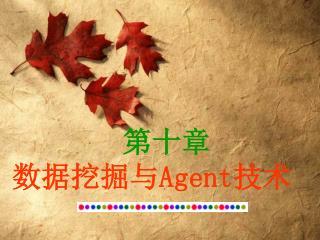 第十章 数据挖掘与 Agent 技术