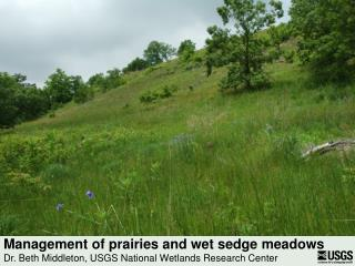 Management of prairies and wet sedge meadows