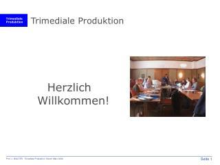 Trimediale Produktion