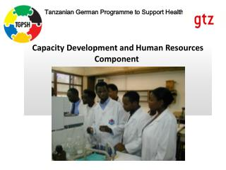 Capacity Development and Human Resources Component