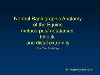 Normal Radiographic Anatomy  of the Equine metacarpus/metatarsus,  fetlock,  and distal extremity