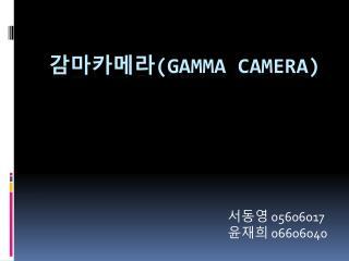 감마카메라 (gamma camera)