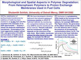1.  Danilczuk, M.; Schlick, S. Coms, F.D.  Macromolecules  2009,  42 , 8907-8913 .